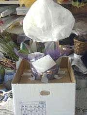 包装・梱包方法